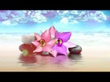 Meditación Música Relax cuerpo de la mente   Relajación Música   Meditación, yoga, spa