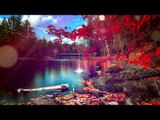 Deep Relax Meditation Música: Delta Waves Música relajante, Música relajante, Música calmante
