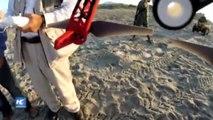 Desove de tortugas en México es vigilado con drones