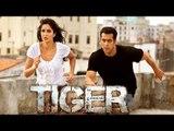 Katrina Kaif To Perform Deadly Action Scenes In Salman's Tiger Zinda Hai