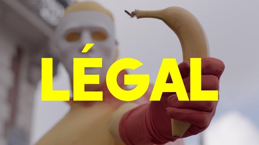 SEIN - LÉGAL