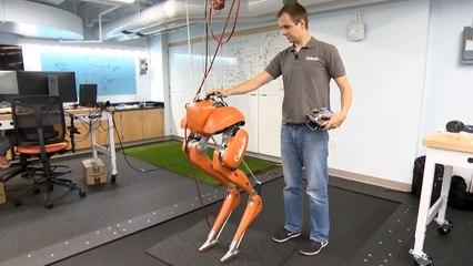 Diese Roboter laufen wie Menschen
