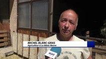Hautes-Alpes : le moment de sortir les animaux des étables