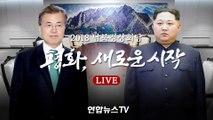 2018 남북정상회담 - 평화, 새로운 시작