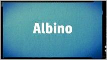 Significado Nombre ALBINO - ALBINO Name Meaning