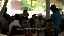 Bathini Brothers Fish medicine for asthma patients at Nampally Exhibition ground,  Hyderabad