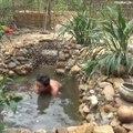 Il fabrique un bassin à poisson magnifique