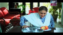 Mein Mehru Hoon Ep 118 & 119 - on ARY Zindagi in High Quality 1st May 2018