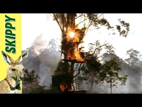Skippy & The Bushfire
