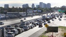 17 U.S. States to Challenge Trump Administration Over Vehicle Emissions
