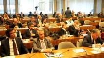 - Uluslararası Türk Akademisi'nden UNESCO'da 'Kaybolan Türk Dilleri' forumu