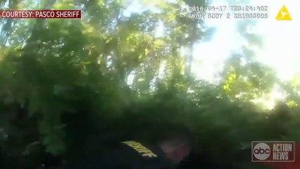 Cache cache avec la police