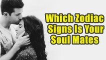 Zodiac Signs Which Are Known To Be Born As Soul Mates   Boldsky
