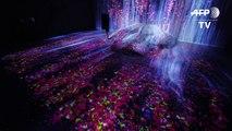 Un museo digital en Tokio desplaza las fronteras del arte