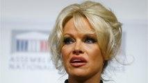 Pamela Anderson Says She Never Spoke To Kid Rock Again After Divorce
