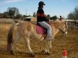Les Photos du Groupe 2 équitation du Samedi