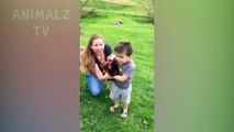 Animaux et bébés mignons Jouer ensemble Compilation - Adorables animaux et vidéos de bébé!