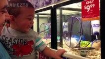 Bébés les plus drôles riant aux animaux de compagnie hystériquement - ESSAYEZ DE NE PAS RIRE
