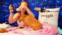 WARNING: CUTENESS OVERLOAD!! ♥ Relaxing Brushing, Scratching & Whispers ♥ Abby's 1st ASMR Spa Day