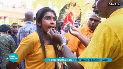 Malaisie : Le tour des miracles - L'Effet Papillon – CANAL+