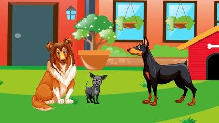 Динозаврик Дэнни - Кошка и Собака (серия 24) - Развивающие мультики для самых маленьких.