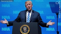 Trump Stands Behind 2nd Amendment Rights In Speech To NRA