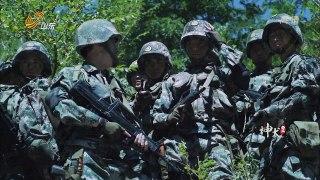 Quan Khuyen Ky Binh Tap 12 Phim Canh Sat Dac Nhiem
