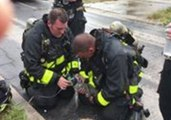 Florida Firefighters Revive Kitten Rescued From House Fire