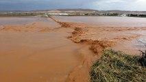 Şanlıurfa'da şiddetli yağış - Taşkın nedeniyle bazı buğday ve pamuk tarlaları sular altına kaldı - ŞANLIURFA