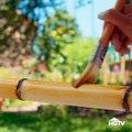 Počela da sastavlja plastične cijevi  Napravila tropski raj u svom dvorištu od kojeg zastaje dah!