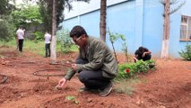Botanik bahçesi gibi okul - GAZİANTEP