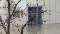 Përmbytjet nga Vjosa në Fier dhe Vlorë ( Pa Koment) - Top Channel Albania - News - Lajme