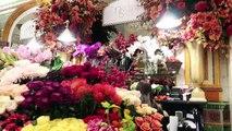 CRAQUAGE chez HARRODS et SELFRIDGES - _ Vlog famille à Londres _ London Family Vlog