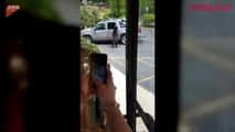 Bear is able to open the door of vehicle!A bear was seen roaming around a parking lot and curiously opened the back door of a truck and climbed inside the veh