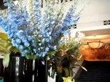 Four Seasons Hotel Bangkoks Saturday Bistro Buffet Lunch