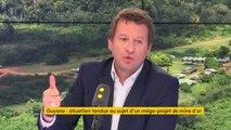 """Projet de mine d'or en Guyane : """"Ce sont des centaines d'hectares voués à la disparition (...) C'est une aberration économique (...) C'est notre Amazonie la Guyane"""", Yannick Jadot, eurodéputé Europe Écologie-Les Verts"""