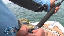 How To Catch Big Fish + Deep Sea Fishing # Saltwater Fishing Videos