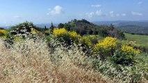Alpes-de-Haute-Provence : le maire de Montfuron espère installer un parc photovoltaique dans son village