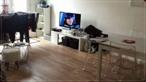 A vendre - Appartement - BAYONNE (64100) - 2 pièces - 53m²
