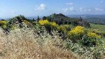 Alpes-de-Haute-Provence : Montfuron, du moyen âge à nos jours découvrez comment ce village s'est développé