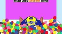New Kids Surprise Eggs Disney Moana Maui Pua Chase Paw Patrol Marshall Skye Color Balls #Animation