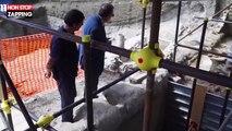 Pompéi : La dépouille d'un cheval retrouvée 2000 ans plus tard ! (vidéo)