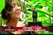 Misterio y color en el valle de Altomayo