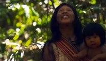 El mundo Animal Documental - AMAZONAS SALVAJE