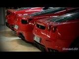 Fairmont Hotel Supercar Lineup - Ferrari, Ferrari, Ferrari, Ferrari, Ferrari...