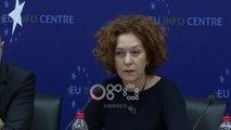 Ora News - Negociatat, Vlahutin: Shqipëria ka bërë progres dhe kjo do njihet në raport
