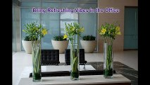 Corporate Flowers Arrangements | Melbourne Fresh Flowers