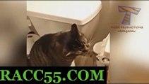 사설경마사이트 , 온라인경마 , RACC55 . CoM인터넷배팅 사설경마사이트 , 온라인경마 , RACC55 . CoM사설경마사이트 , 온라인경마 , RACC55 . CoM♬사설경마사이트 , 온라인경마 , RACC55 . CoM♬사설경마사이트 , 온라인경마 , RACC55 . CoM♬사설경마사이트 , 온라인경마 , RACC55 . CoM♬사설경마사이트 , 온라인경마 , RACC55 . CoM♬사설경마사이트 , 온라인경마 , RACC55 . CoM♬