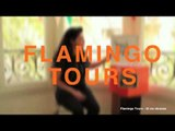 Flamingo Tours #MusicBox | La Cupula Music