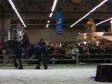 Spectacle frison/danse au Salon du Cheval (4 décembre 2007)